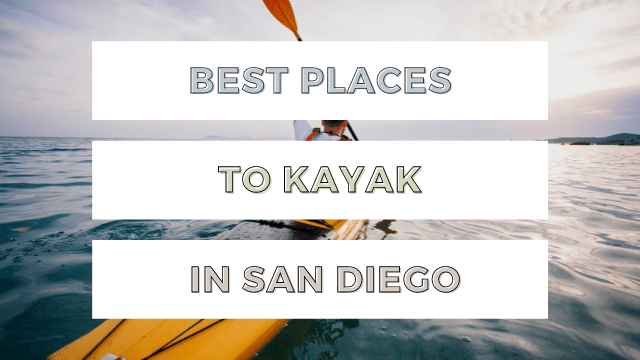 Best Places to Kayak in San Diego